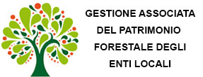 Banner gestione forestale