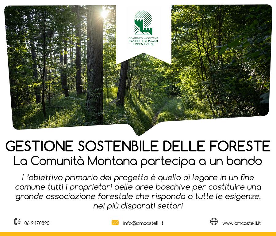 LO SPORTELLO FORESTALE DELLA COMUNITA' MONTANA ADERISCE AL BANDO DEL MIPAAF PER PROMUOVERE LE FORME ASSOCIATIVE E LA GESTIONE SOSTENIBILE DELLE FORESTE